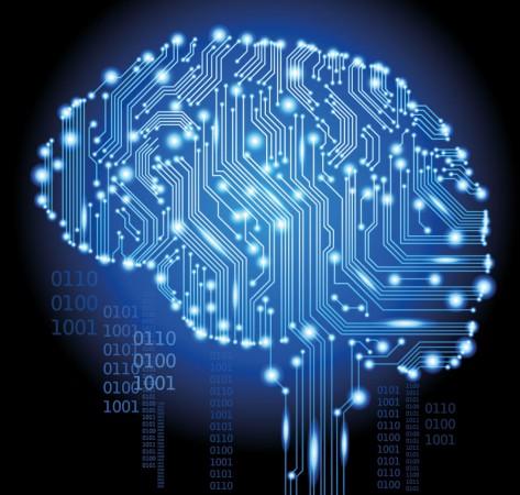 Mózg zawiera w sobie również układ limbiczny
