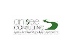 Ansee Consulting - logo